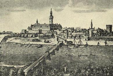 Krapkowice ze starej pocztówki _XVII wiek.jpeg